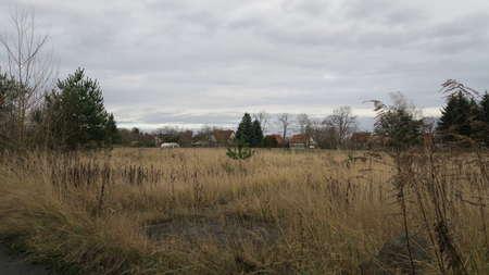 Datsche / Pferd / Schaf / Schwein - Grundstück in Jeserig